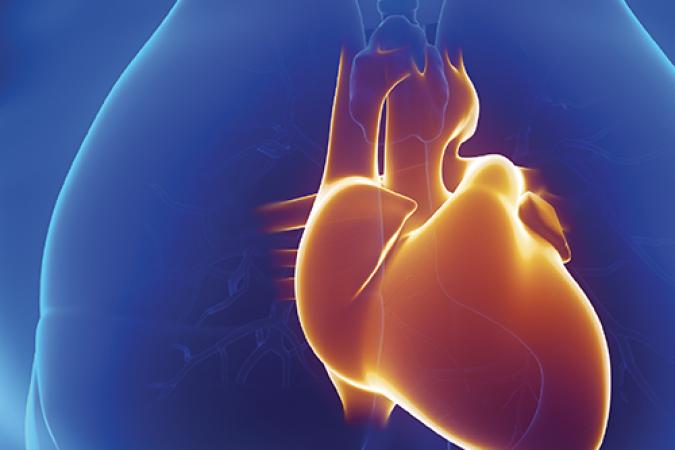 Colloque de formation « Prévention cardio-neuro-vasculaire: quoi de neuf? »